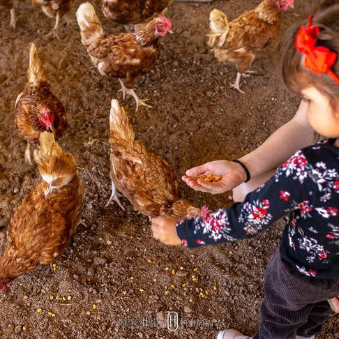 Férias Escolares – o que fazer com as crianças?
