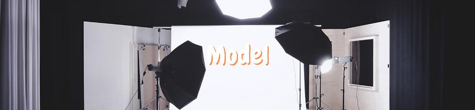 modelbanner.png