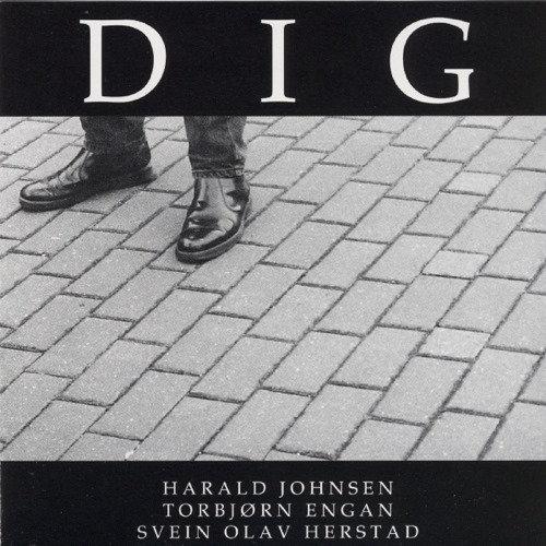 Svein Olav Herstad Trio - Dig (CD)