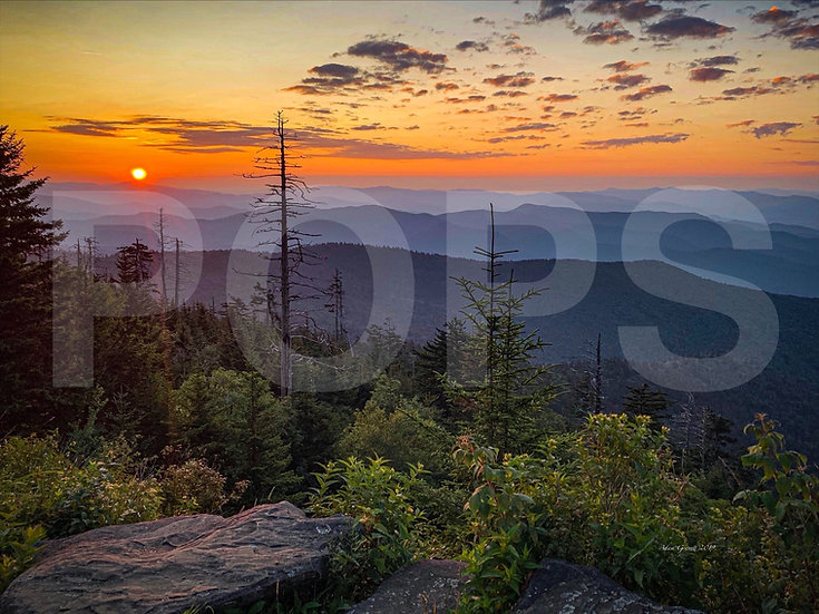 Sunrise on Clingmans Dome