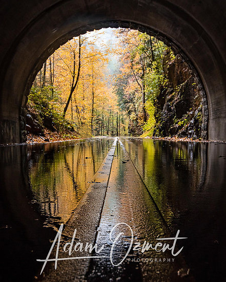 Tunnel to the Cove