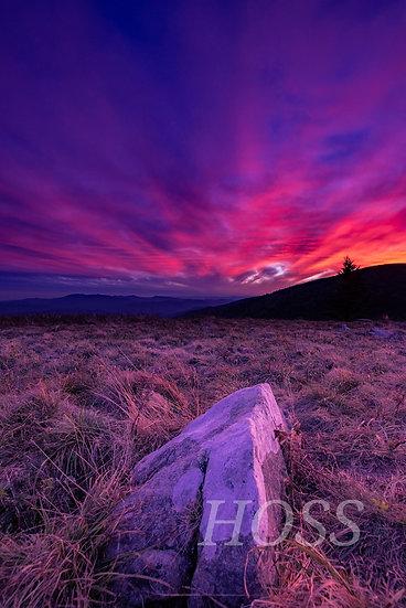 Sunrise on Roan Mountain