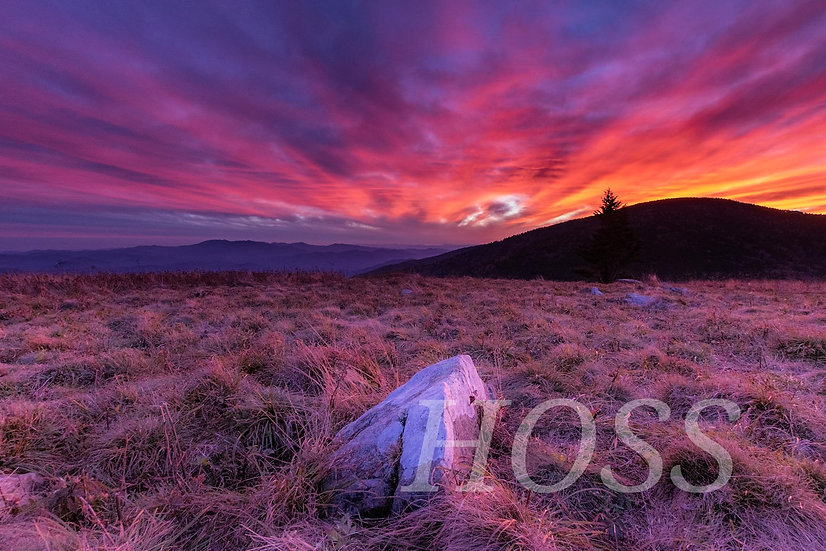 Sunset from Roan Mountain