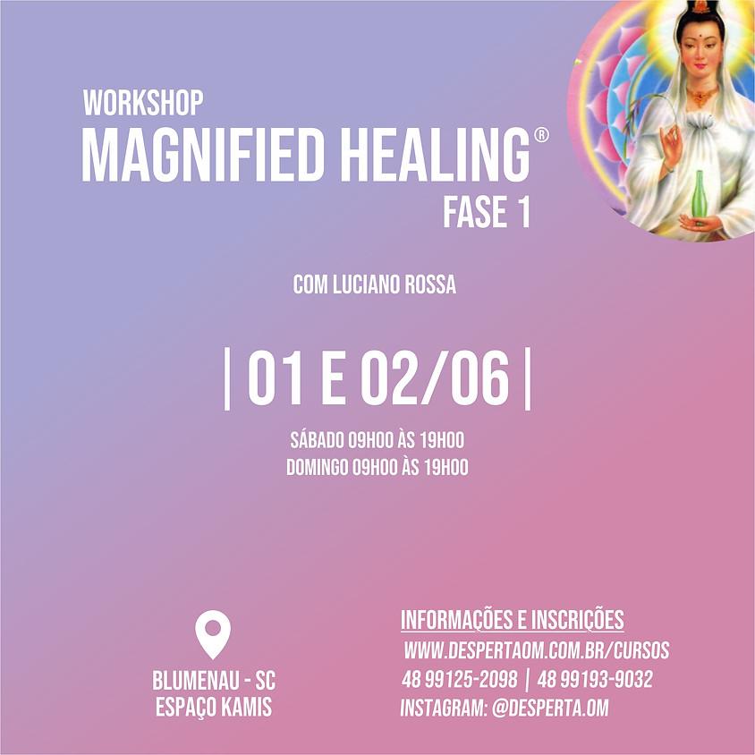 Workshop Magnified Healing® em Blumenau - Fase 1