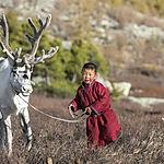 Mongolia-travel-reindeer-boy.jpg