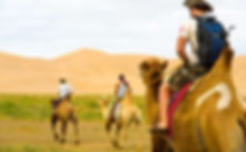 mongolia travel camel riding