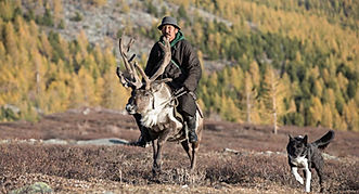 Mongolia travel reindeer