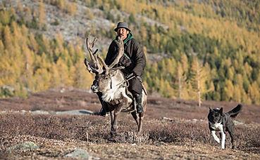 mongolia travel reindeer rider