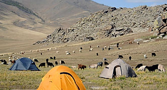 Mongolia travel camping