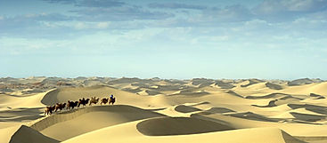 Mongolia-travel-gobi-desert-camel-travel