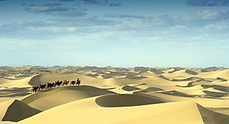 Mongolia travel gobi