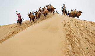 Mongolia gobi tours