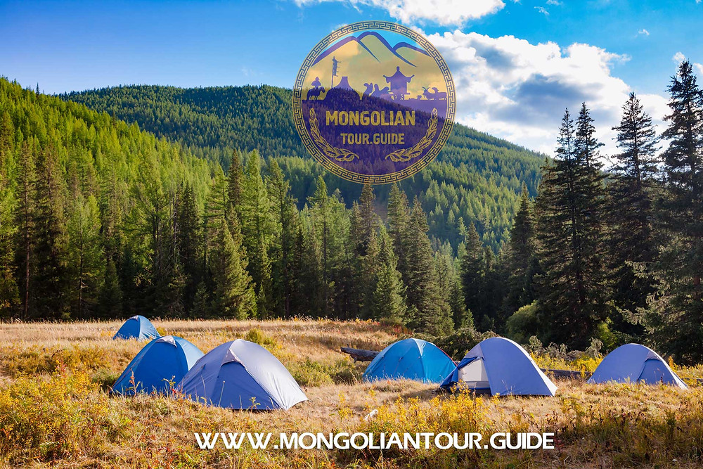 Mongolian forest camping