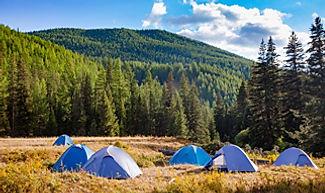 Mongolia travel camping