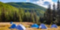 Mongolian-forest.jpg
