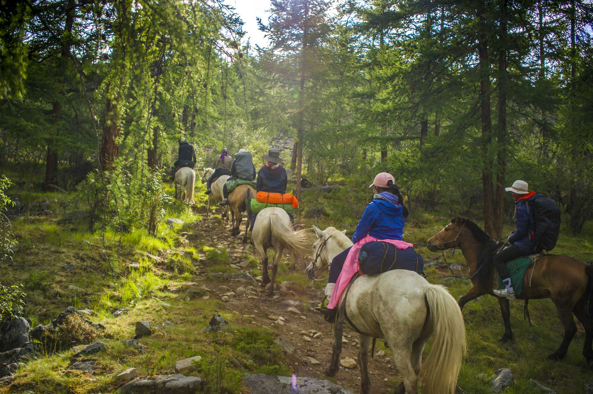 horse-trekking-tour-mongolia