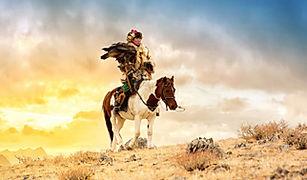 Mongolia eagle hunter