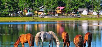 Mongolia-travel-lake-horse-mirror.jpg