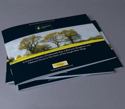 Sycamore Brochure