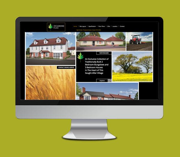 Development Web Site