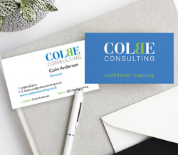 Colbe Consulting