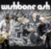 WishboneAsh_Gallery.jpg