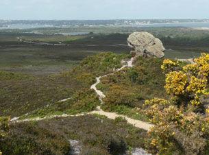 Sandstone rocky outcrop known as Agglestone Rock or Devil's Anvil