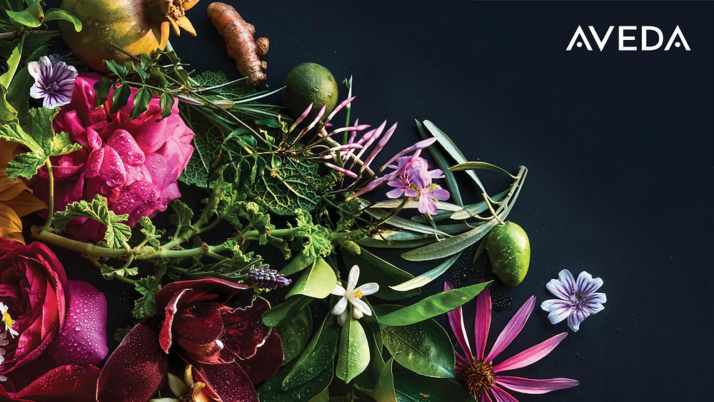 Colorful image of Aveda's botanicals on a black background, with AVEDA text logo at top right corner