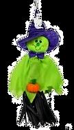 Green Witch Killiecrankie_edited.png