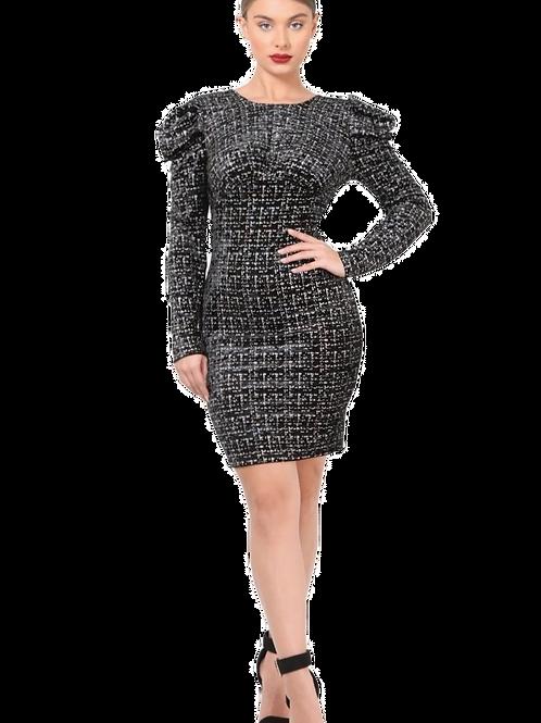 Roxana Bodycon Dress