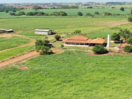 Fazenda é monitorada por Drone no Interior de Macedônia - SP