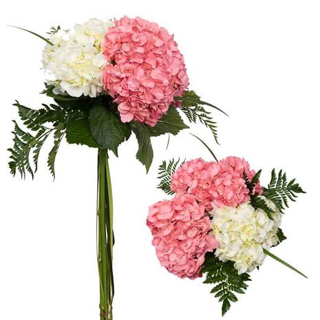 Women's Day N°1 Bouquet