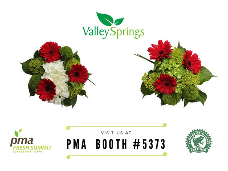 Valley Springs at the PMA Fresh Summit Convention (Orlando Oct 19-20)