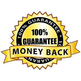 Money back 100% guarantee. Golden icon..