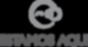 Logo Fundo Transparente G.png