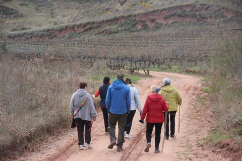 Locals guide participants in a walk