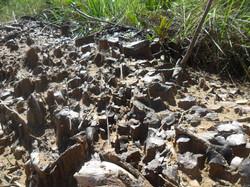 Formações geológicas