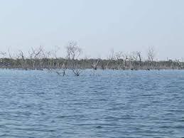 Pesca Esportiva Lago de Peixe