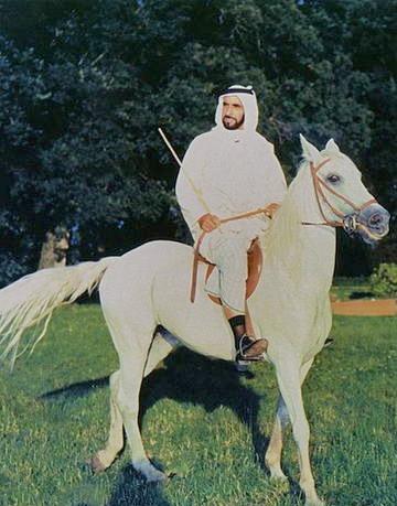 sheikh zayed emirates