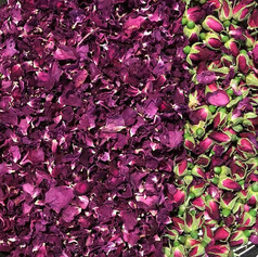 We're brewing up a new batch of Booch using locally foraged rose petals and buds.jpe