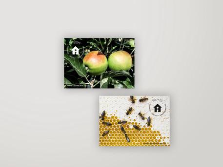 anneschubert Branding Obsthof Roos