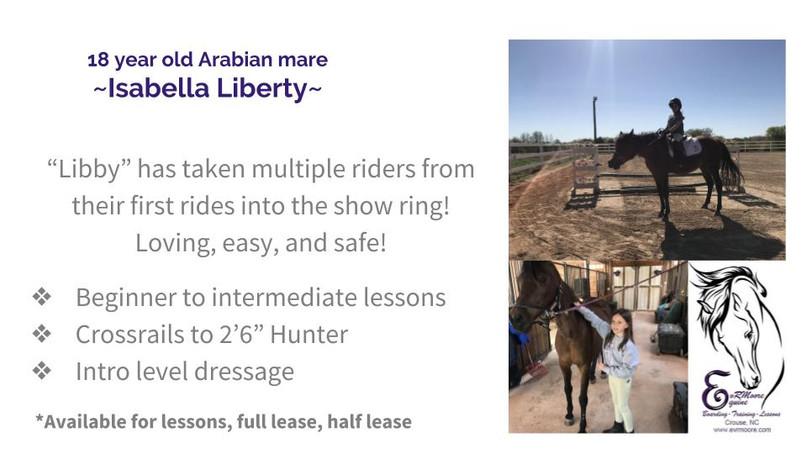 Lesson Horses (2).jpg