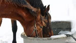 Water and Winter: Why your horse needs ice-free buckets