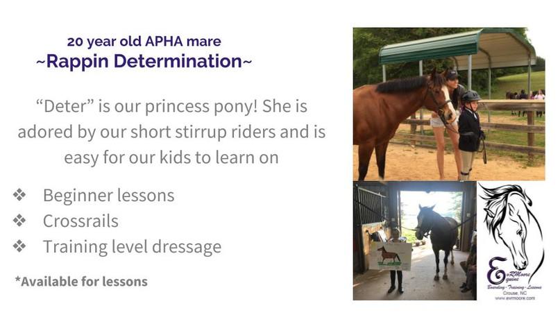 Lesson Horses (3).jpg