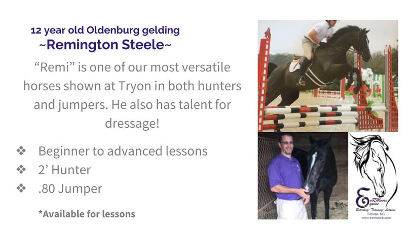 Lesson Horses (5).jpg