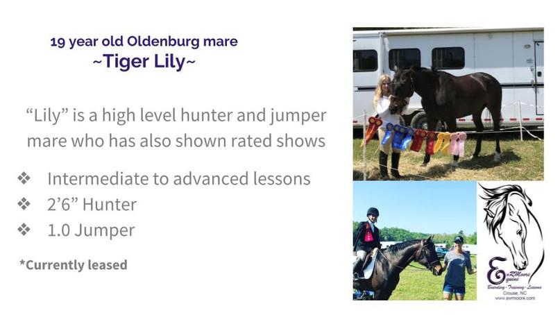 Lesson Horses (4).jpg