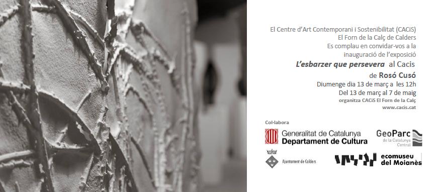 exposició individual al Cacis, març-abril-maig 2016