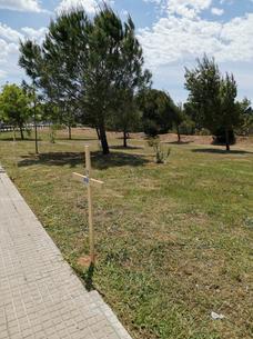 Camí del calvari_creu amb codis QR.jpeg