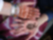 henna hands with Rosemary.jpg