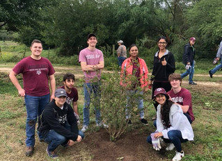 HKN takes on Aggie Replant